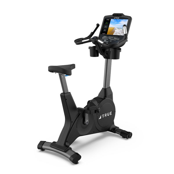 True 400 Upright Bike